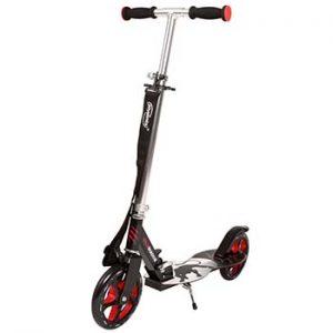 physionics Monopattino scooter due ruote regolabile